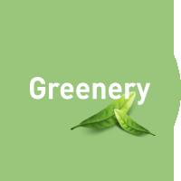 일상 속 'Greenery'