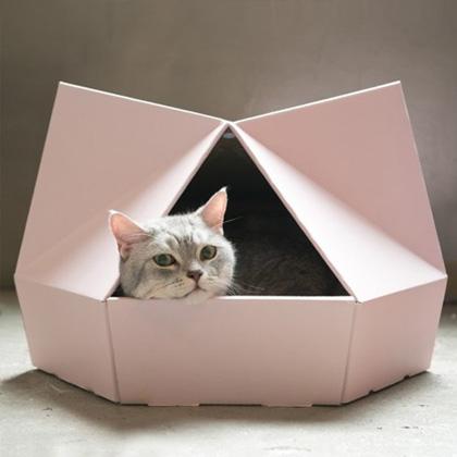 고양이 속에 고양이 있다