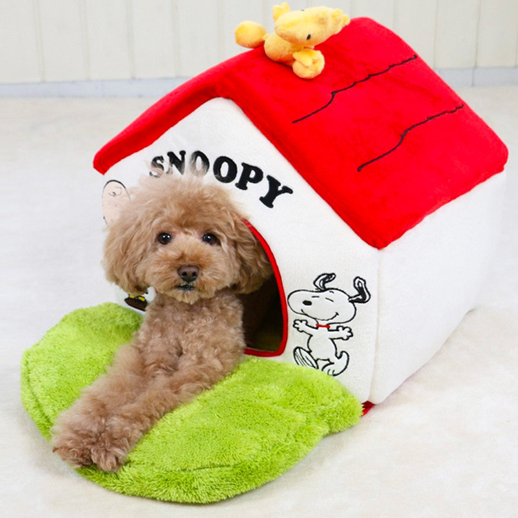 세상에서 가장 유명한 강아지, 스누피