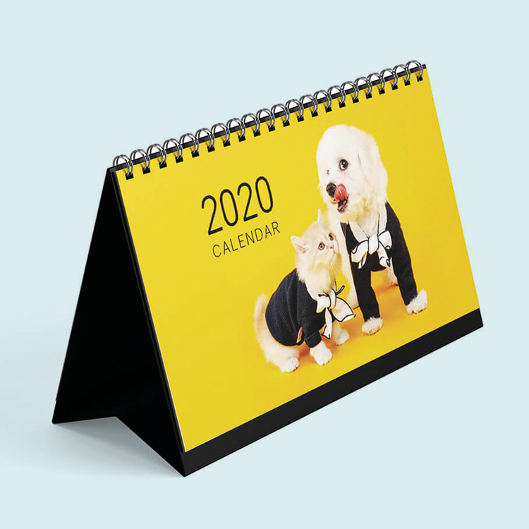 2020년 더 새로워진 펫찌 달력!