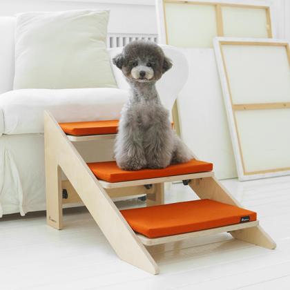 강아지 계단과 슬라이드 중 고민이라면? 팀비리체로 해결!