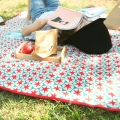 Colorful Picnic!