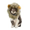 ����� ���� �ĵ� Cat's lion hood