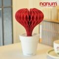 nanum �ڿ��� ������ ������