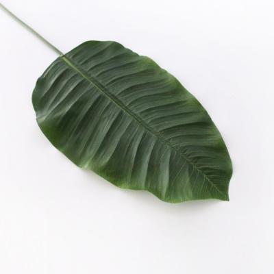 바나나 잎 그린 조화