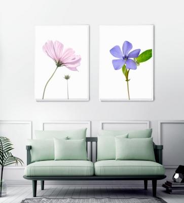 [특별가] 식물 그림 포스터 택1