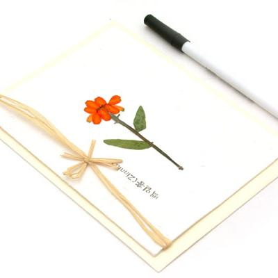 누름꽃카드-백일홍