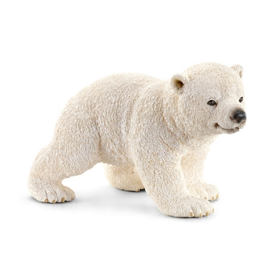 걷고 있는 새끼 북극곰_(300503867)