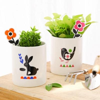 Happy Plant (식물포함)