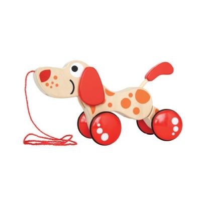 [하페]내친구 강아지
