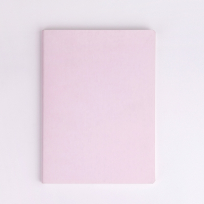 Shell pink on palette