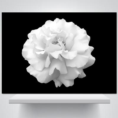 로즈, 심플 블랙 - 폼보드 감성사진 액자