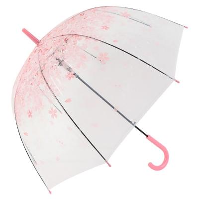 체리블라썸 돔모양 투명우산 / 벚꽃 장우산_(1129013)