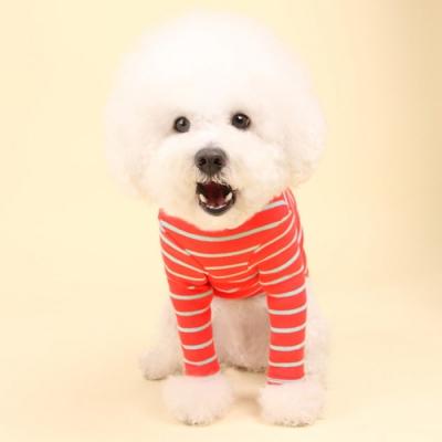 스트라이프티 (strawberry) Stripe T