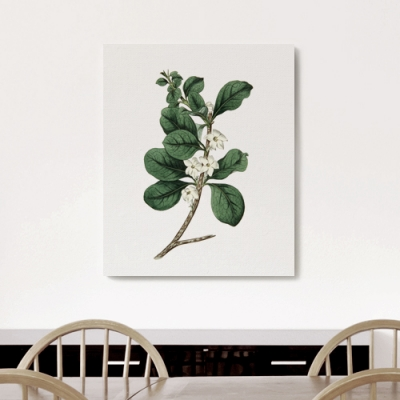캔버스 프로방스 나뭇잎 액자 보타니컬 아트 플라워B