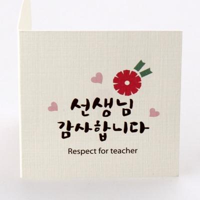 심플카네이션 선생님감사합니다 카드