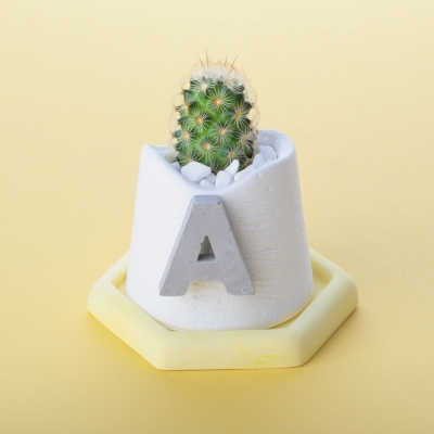 initials pot (이니셜 화분)