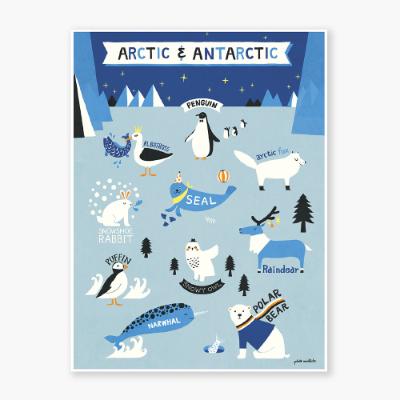 Arctic & Antarctic Art poster