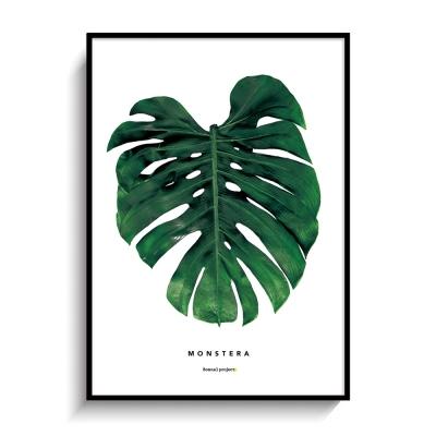 몬스테라 보타니컬 인테리어 포스터,액자
