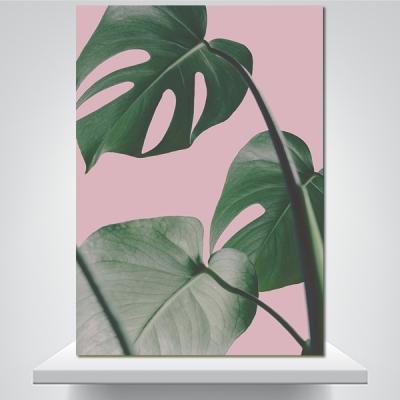 몬스테라 핑크 2 - 감성사진 폼보드 액자