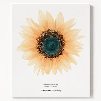 캔버스 풍수 지리 꽃 식물 패브릭 액자 해바라기