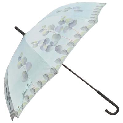 보태니컬 수채화 자동장우산