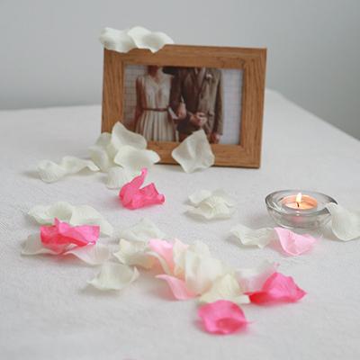 프리미엄 조화장미꽃잎 (약 150개입)_(506579)
