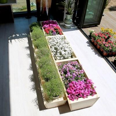 원목 텃밭 화분 1800(소형) 정원가구 베란다 옥상꾸미기