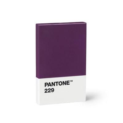 New 팬톤 카드/명함 케이스(오버진229)