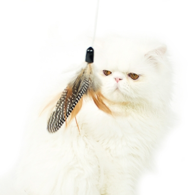 FEATHER HUNTING TOY NATURAL