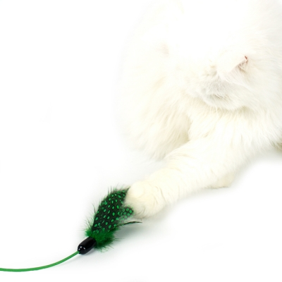 FEATHER HUNTING TOY [GREEN]
