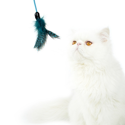 FEATHER HUNTING TOY [BLUE]