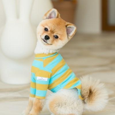 Candy T-shirt / mint & mustard (와펜set)