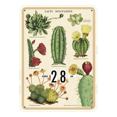 카발리니 빈티지 만년달력 - Succulents