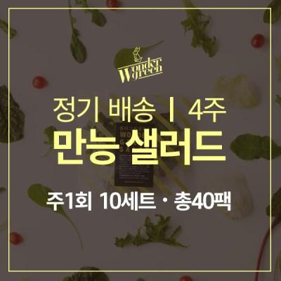 [정기배송]만능샐러드 10팩x4주(총40팩)