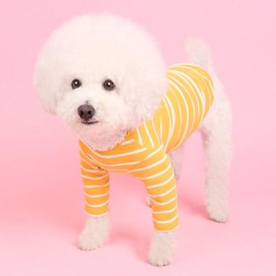 스트라이프티 (mustard/ivory) Stripe T