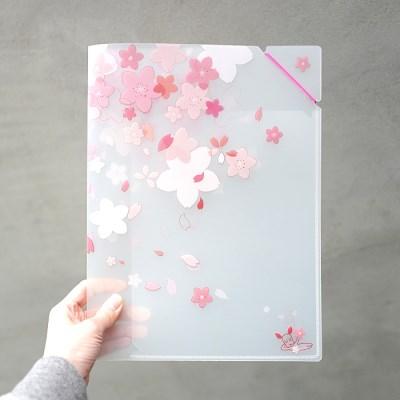 벚꽃비 투포켓 밴드파일