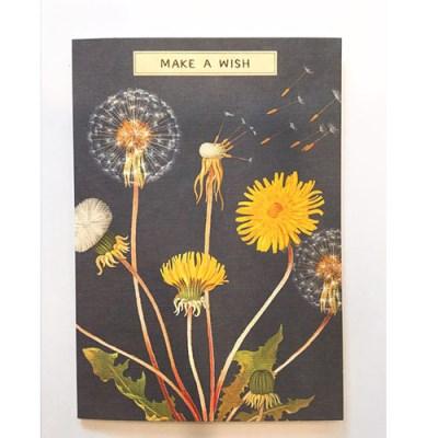 카발리니 카드-Make a wish