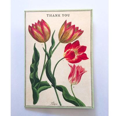 카발리니 카드-Thak you fleur3