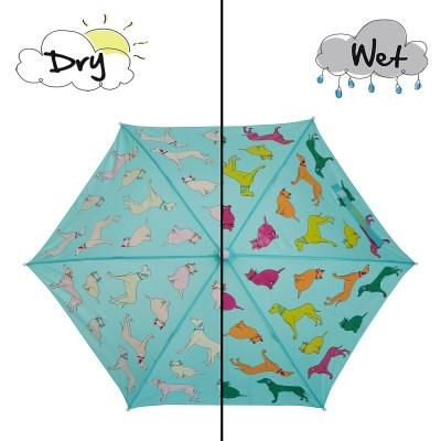 Holly & Beau 컬러체인징 우산 - 캣앤독