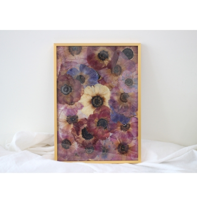 press flower _ anemone / gold frame