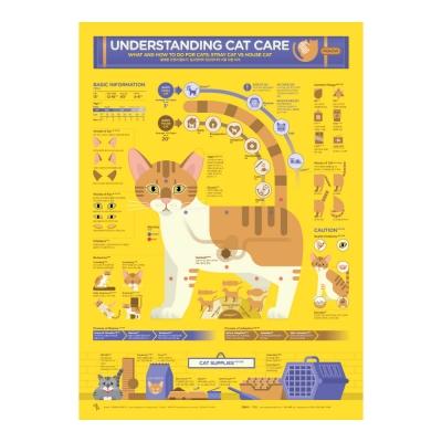 인포그래픽 포스터 - 올바른 고양이 돌보기