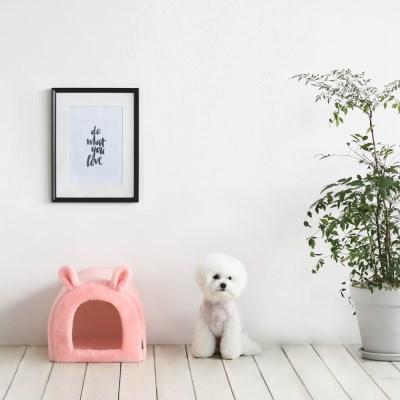 바니펫하우스(핑크)