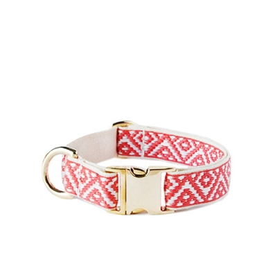 CARA GOLD COLLAR
