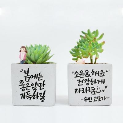 (서대문) 세상에 단 하나뿐인 선물, 캘리그라피 화분 원데이 클래스