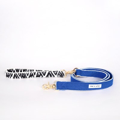 BLUE RAY LEASH