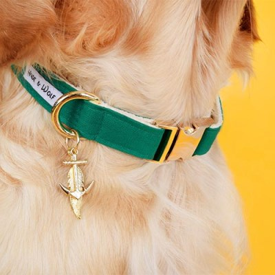 GREEN RAY COLLAR