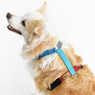 [HAQIHANA] 하키하나 보듬 콜라보 가슴줄 강아지 하네스
