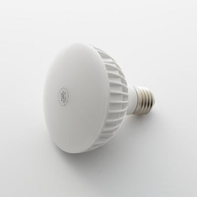 [일광전구] LED 전구 PAR30 12W (확산형)