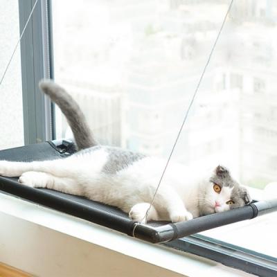 [갓샵 꿀잠 고양이창문해먹] 최대 20kg 윈도우 냥이침대